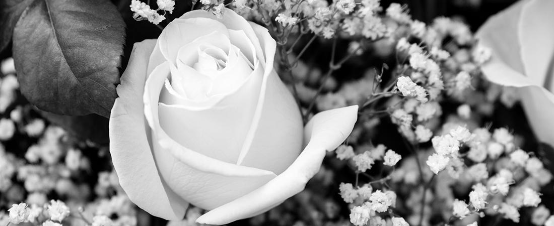 Beerdigung Bestattung Trauer Fotografie