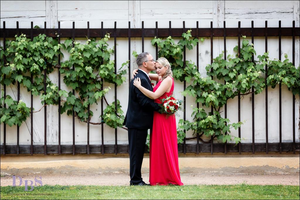 Brautpaar stehend und kuschelnd vor einer Efeu Mauer
