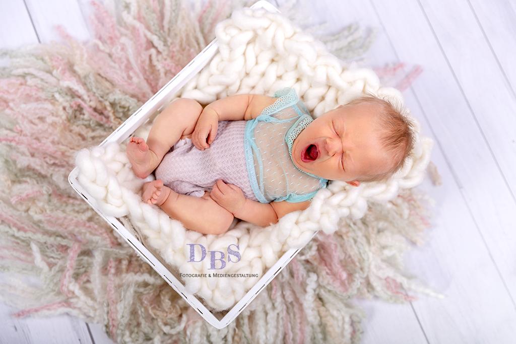 Newborn Fotografie Fotograf Dessau Die Bessere Seite